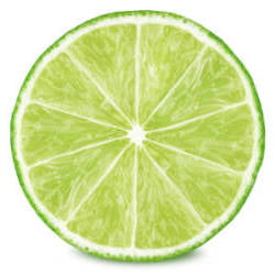 image of lime slice