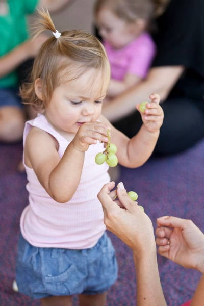 image of little girl trying grapes