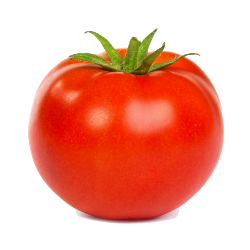 image of a shiny red tomato
