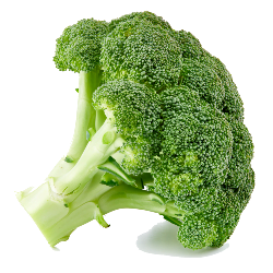 image of vibrant green broccoli